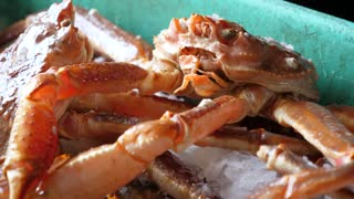 Fresh Large Crabs On Cold Ice Being Prepared For Cooking