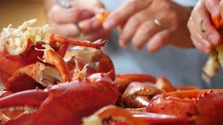 Hands Chop Hot Fresh Boiled Red Lobster For Dinner