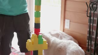 Little Boy Playing With His Building Blocks In The Living Room