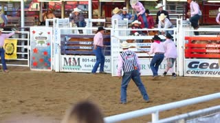 Wild Bareback Rodeo Ride