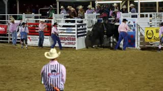 Wild West Bull Riding Slow Motion