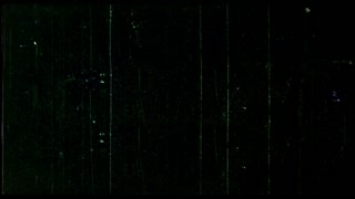 8mm film damage - The End - black