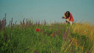 A little girl picking flowers in the field on a sunny day.