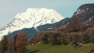 Austrian Mountain 2