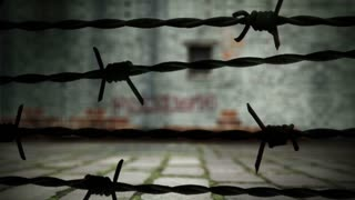 Barbed wire and prison wall.