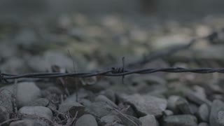 Concentration Camp - barbed wire travelling