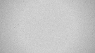 Film Grain Dust Flicker - Med BW