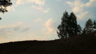 Little boy run through the trees. Slow motion footage.