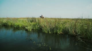 Man and horse in field near river. Danube Delta, Romania.