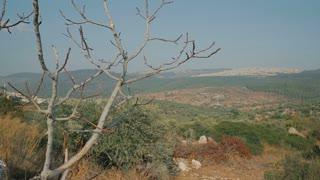 Palestinian city near Nazareth. Lower Galilee - Israel, cca 2015.