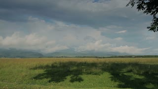 Romanian landscape with green fields and mountains in the background.