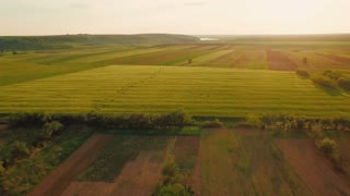 Aerial view of a agricultural land - ELS