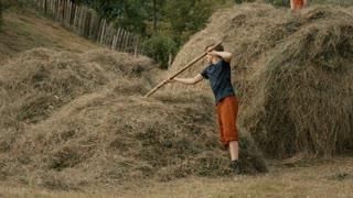 Boys building a haystack - detail