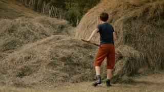Boys building a haystack
