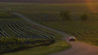 Car driving at sunset