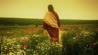Christ, as seen from behind, walking alone through poppy field.