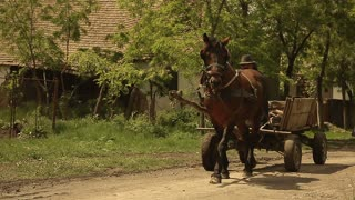 Gypsy man with horse and cart