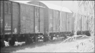 Holocaust train in Romania - LS
