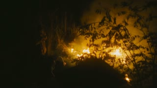 Homeless people keeping warm near a fire in the wood at night