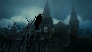 Old medieval castle at night with a crow in foreground