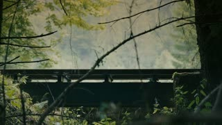 Old steaming train passing by