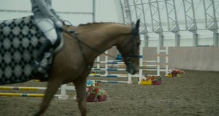 White horse at competition - jumping