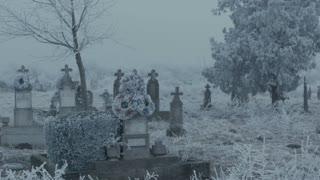 Woman walking in a cemetery on winter