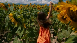 Young girl running through sunflower rows - slo mo