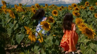 Young girls running through sunflower rows - slo mo