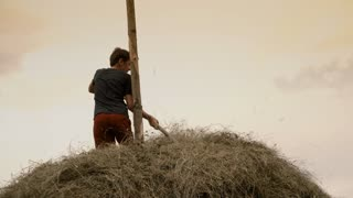 Young man on top of a haystack