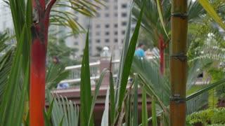 People in Kuala Lumpur City Centre Park, Kuala Lumpur, Malaysia