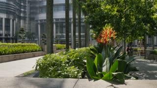Tropical Plants, Kuala Lumpur, Malaysia
