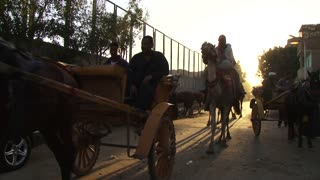 Horse drawn carriage and camels carrying people down a street at sunset dusk, public transport Cairo, Egypt, Africa