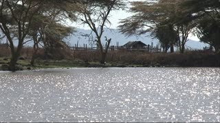 Watering hole, small dam, body of water in Kenya, Africa