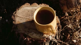 A cup of tea on a stump