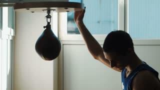 boxing speed punching bag