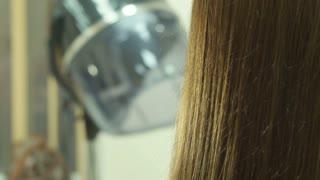 hair dresser and haircut