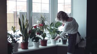Half body portrait of young woman at home watering flowers in the window with a spray gun in winter