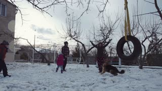 Happy family throw snow up in the air and laugh. Sheep dog running around