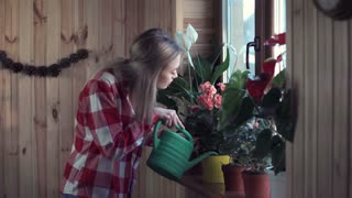 Side view of young blond woman watering flowers on window ledge inside home. Middle 4K shot