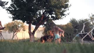 Slowmotion of ground level view of puppy dog running outside in park with tree and swinging bench in background