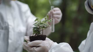 Crop biochemists dropping water on small sample of earth with sprout