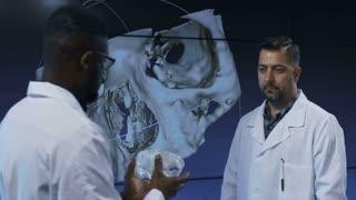 Diverse professional scientists in medical robes having 3-D printed model of human cranium exploring its peculiarities.