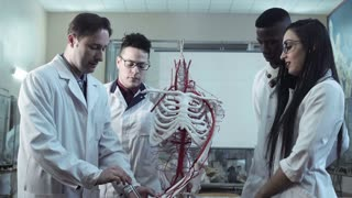 Group of diverse young interns or medical students at an anatomy lecture with a doctor demonstrating the structure of the human skeleton and circulatory system