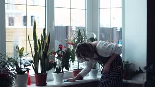 Young beautiful woman housewife weared in white sweater and apron eyeglasses, tired of cleaning window, turn and looking in to the camera, she shows a tired face middle shot 4K