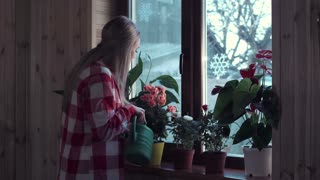 Young woman watering flowers on window at home with green watering pot middle 4K shot