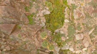 Aerial California Desert Oasis