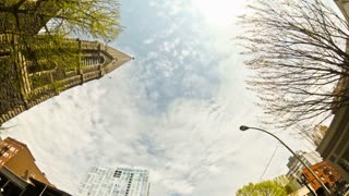 Driving Portland Vertical