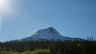 Oregon Mt Hood Forest