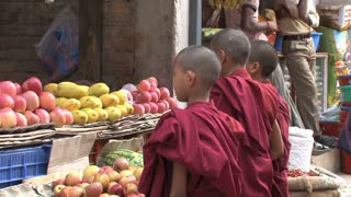 Child monks ordering fruit at the market